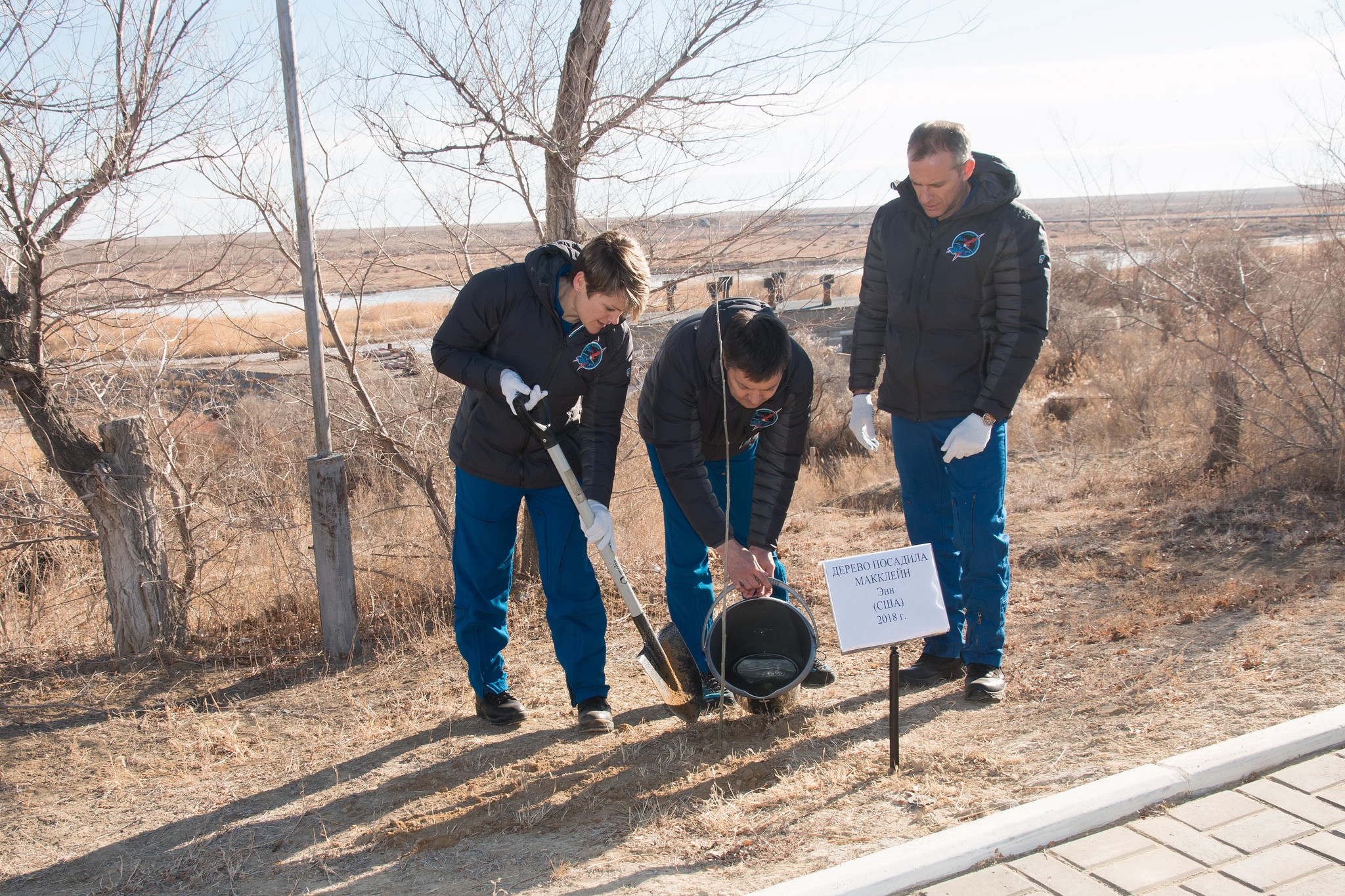 At their Cosmonaut Hotel crew quarters in Baikonur, Kazakhstan, Expedition 58 crew members Anne McClain of NASA (left), Oleg Kononenko of Roscosmos (center)and David Saint-Jacques of the Canadian Space Agency (right) plant a tree in McClain's name Nov. 27